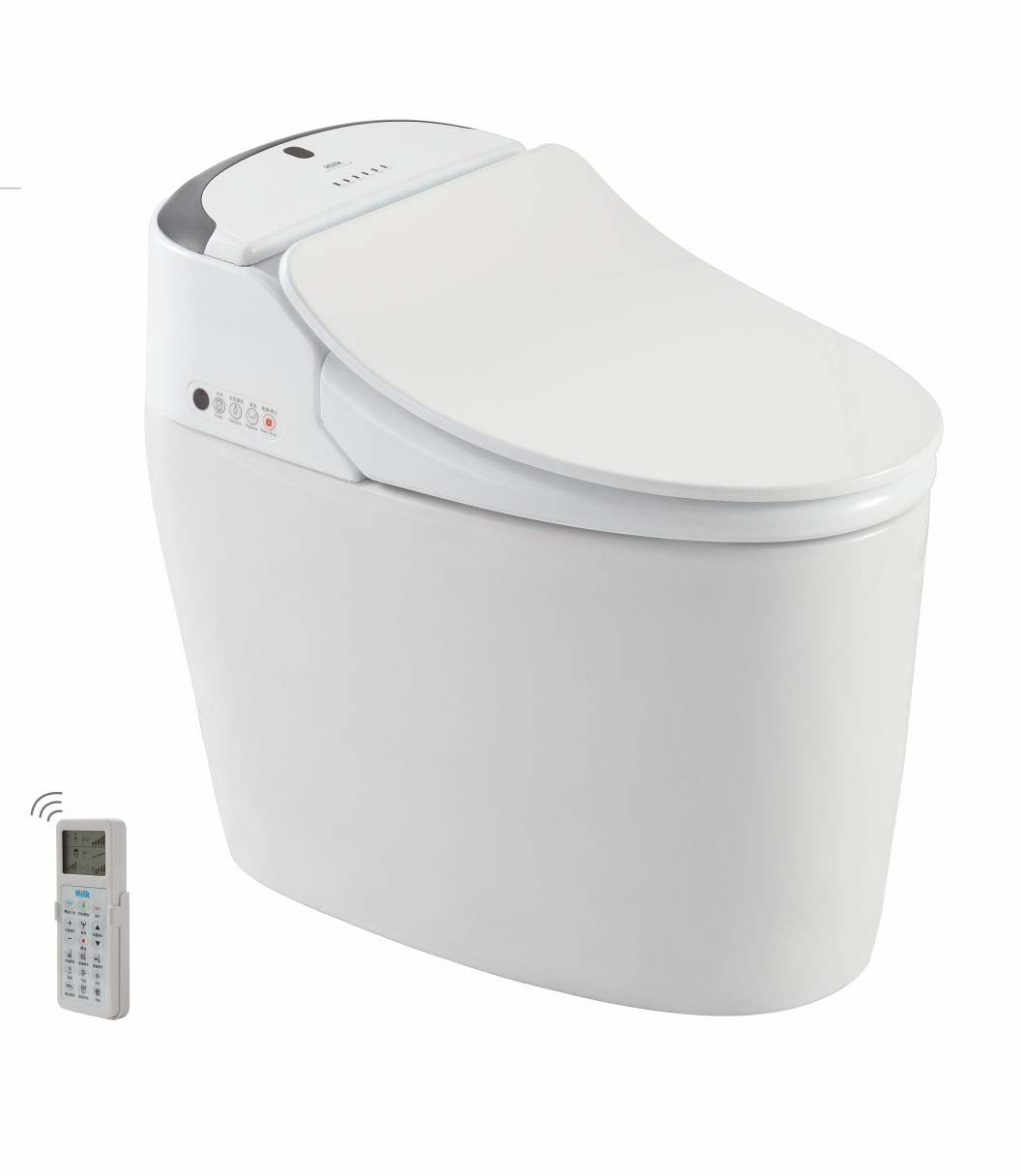 Elegant Style Auto Deodorizer Ceramic Chinese Cheap Smart Pedestal Squat Toilet
