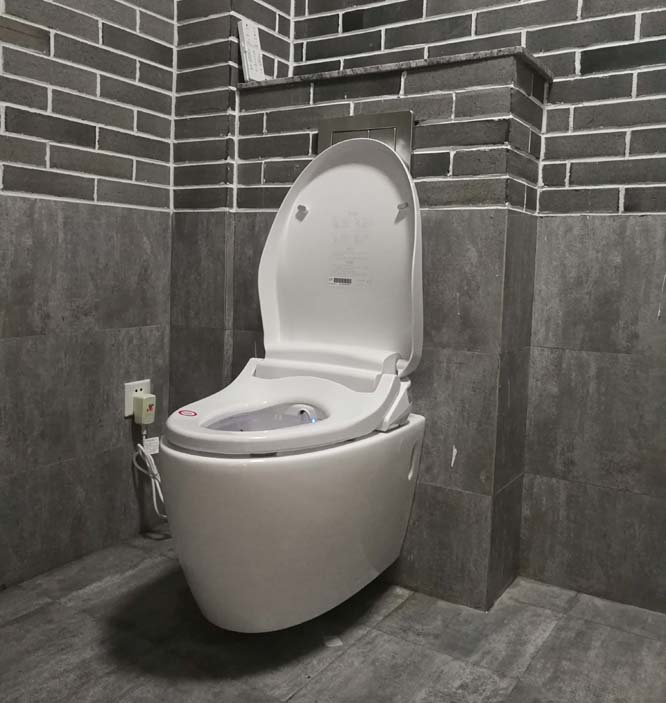 AK47 Lengthened intelligent Toilet Bidet